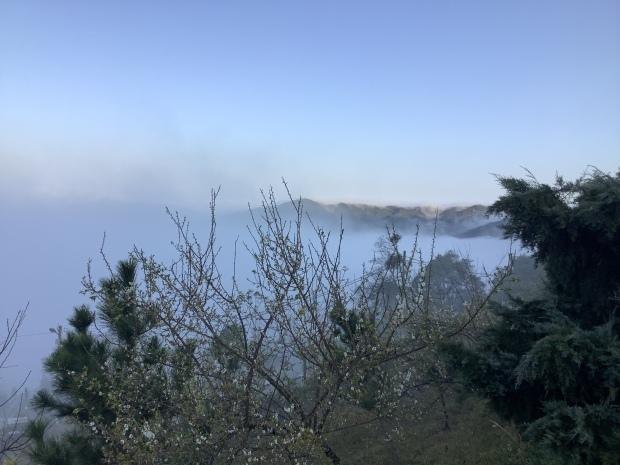 我們在雲上面露營_f0057324_19263582.jpeg