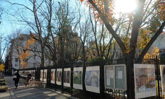 じわじわ、じっくりニューヨークの壁画巡り、チェルシー編(2)歴史地区_b0007805_21372933.jpg