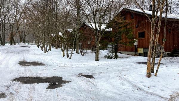 今日も雪景色のきたかるより*_b0174425_16385201.jpg