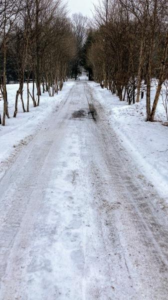 今日も雪景色のきたかるより*_b0174425_16435160.jpg