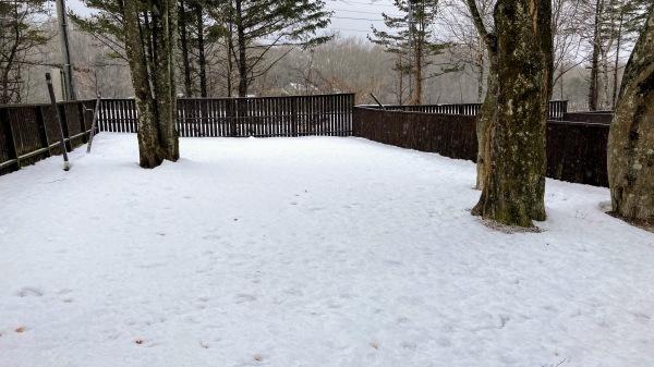 今日も雪景色のきたかるより*_b0174425_16515066.jpg
