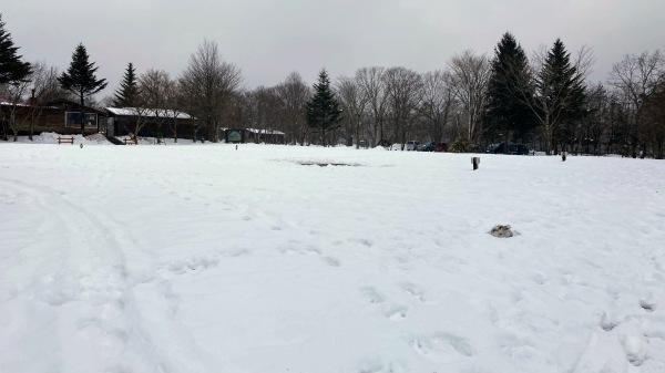 今日も雪景色のきたかるより*_b0174425_16533432.jpg