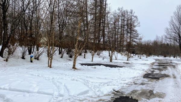 今日も雪景色のきたかるより*_b0174425_16594829.jpg