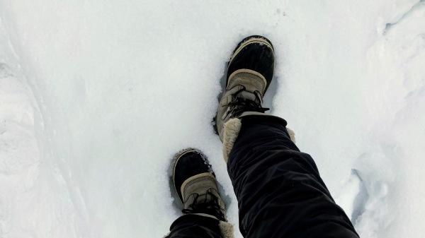 今日も雪景色のきたかるより*_b0174425_17113600.jpg