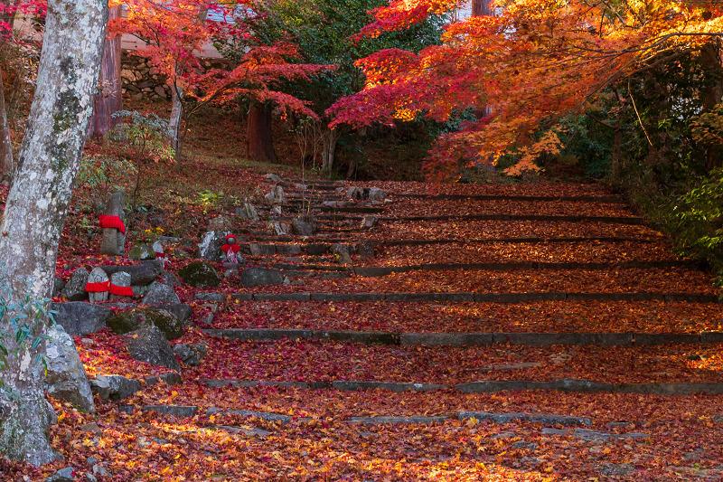 2020紅葉きらめく京都 和束正法寺の散り光景_f0155048_23003274.jpg