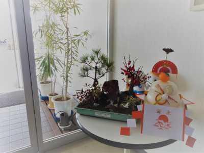 正月用寄せ植え盆栽をリース及び販売しました!_d0338682_11254533.jpg