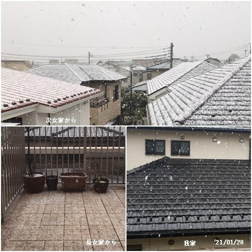 程久保川を散歩、1月の満月、雪降る_c0051105_23351631.jpg