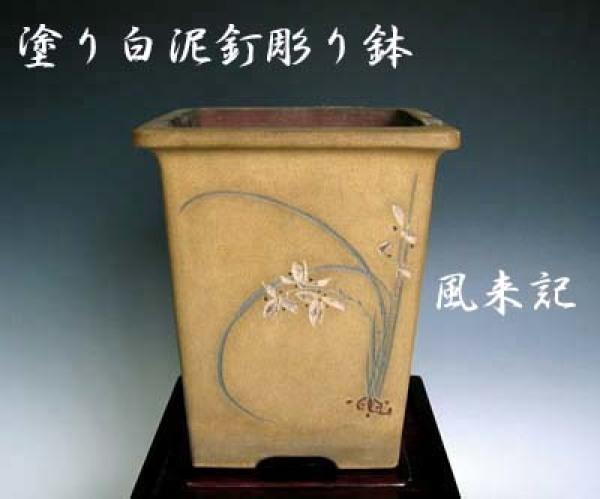 中国春蘭「武夷山黄花」          No.2076_d0103457_07200089.jpg