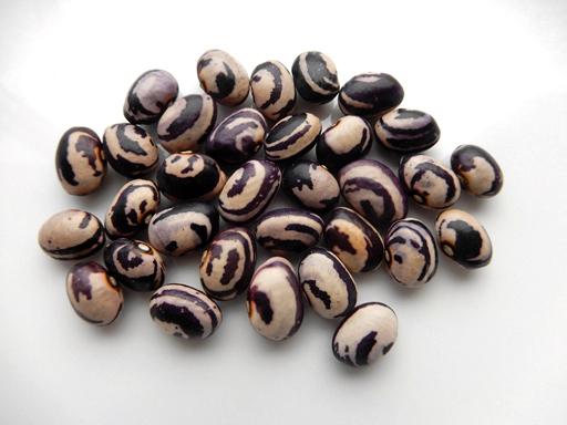 新豆を食べる_d0366590_12532672.jpg