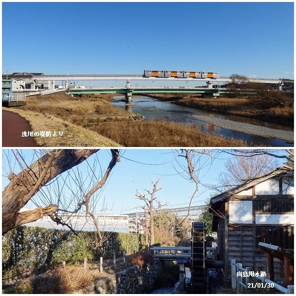 程久保川を散歩、1月の満月、雪降る_c0051105_21460363.jpg