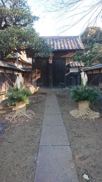 第122回 1月(睦月)黒松とオオカマキリの卵のう_b0199122_03273302.jpg