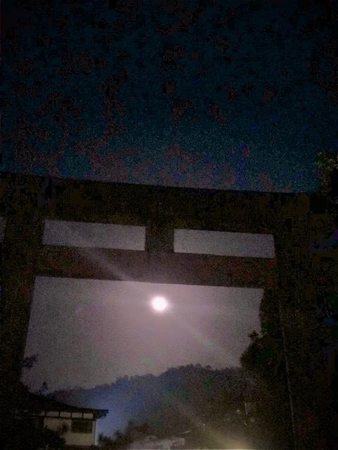 十六夜_e0128011_05402378.jpg