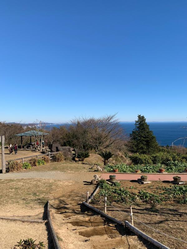 Odawara 2021 First half_b0223512_21041817.jpg