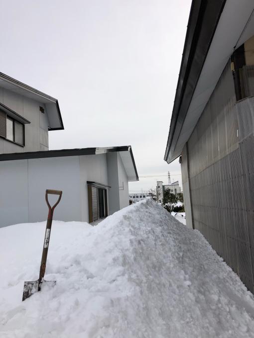 冬真っ盛り_b0093660_08584912.jpg