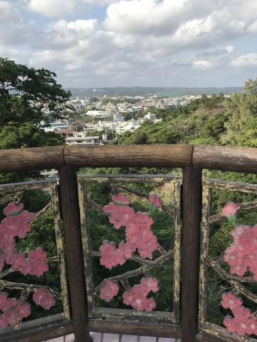 Cherry Blossom seeing._c0153966_19184403.jpeg