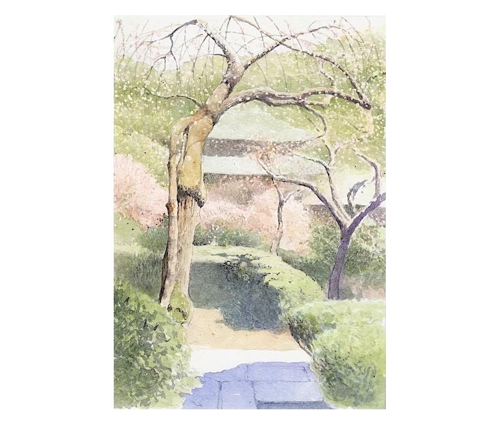 春・一期一会_f0006171_18175258.jpg