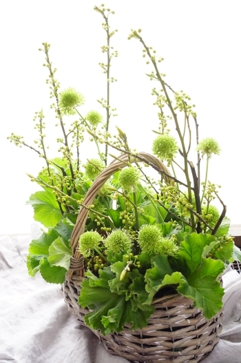 ラッキーカラーのお花を飾りましょう(#^.^#)_b0151911_10592185.jpg