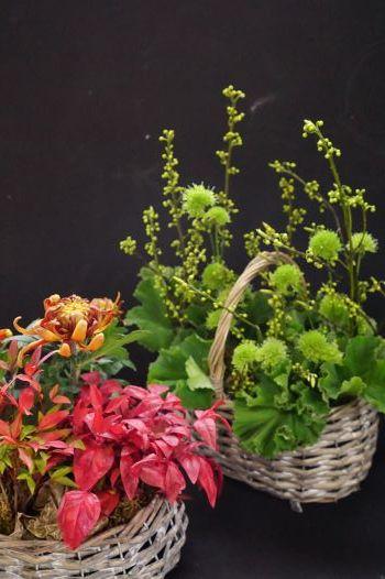 ラッキーカラーのお花を飾りましょう(#^.^#)_b0151911_10593813.jpg