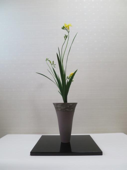フリージア、スイトピー、額紫陽花等々春の花材_a0214206_20290370.jpg