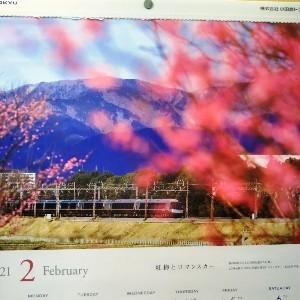 春が、来ました!_c0228952_10453477.jpg