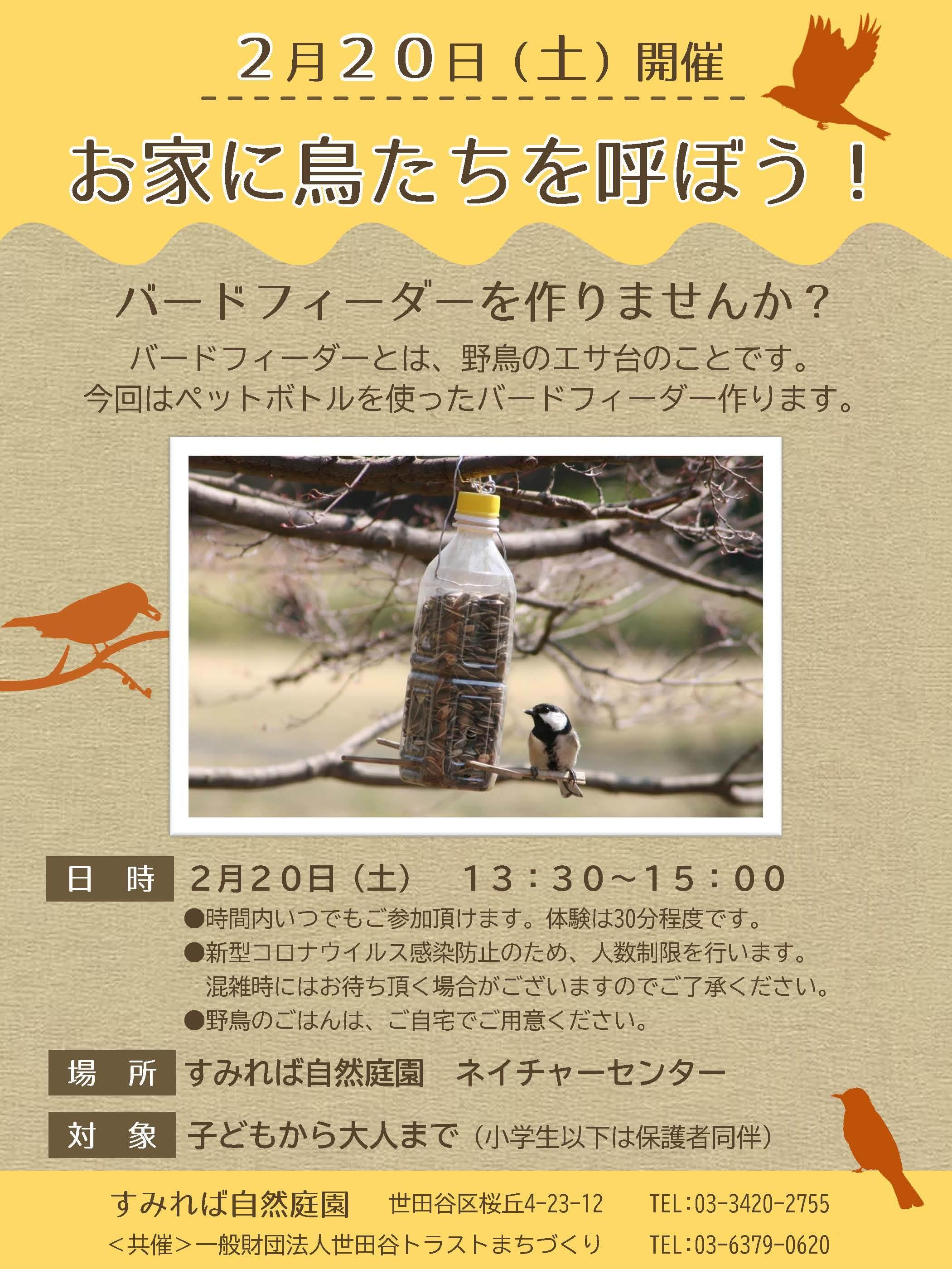2/20(土)開催 イベント「お家に鳥たちを呼ぼう!」_b0049307_11245617.jpg