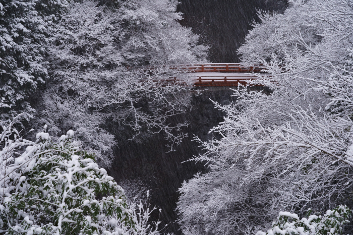 西明寺 指月橋_e0177413_21431380.jpg