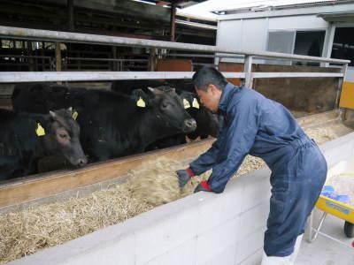 熊本県産の黒毛和牛100%のハンバーグステーキ!数量限定販売中!令和3年2月は17日(水)の出荷です! _a0254656_14555085.jpg