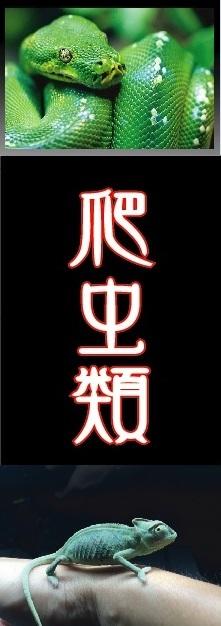 2/5 店長日記_e0173381_18300203.jpg