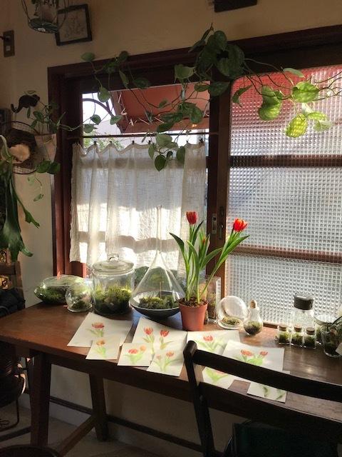 京都のプランツプランツカフェでのワークショップ、終了しました。_c0138704_21223067.jpg