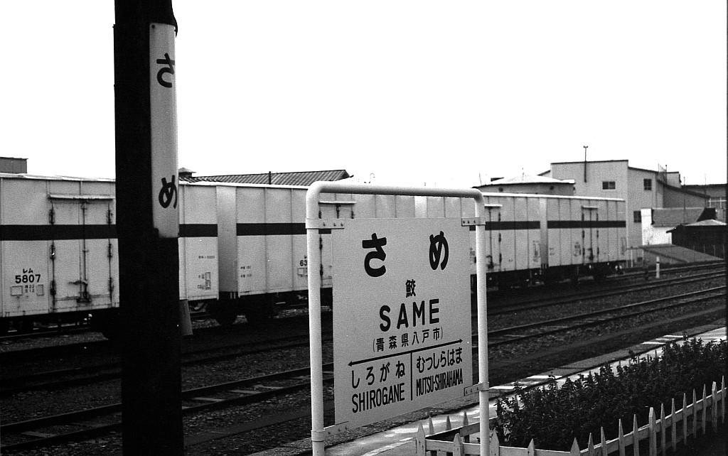レムをレストアして八戸線鮫駅の側線を再現する_f0203926_16042964.jpg