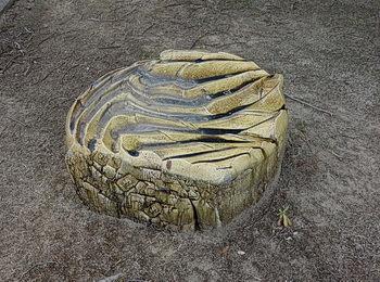「月の石」と「月の椅子」。_d0065737_03064669.jpg