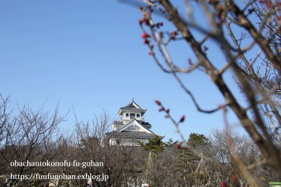 もうすぐ春の琵琶湖散歩&岩崎珈琲さんへ行って来た~(^^♪_c0326245_13151248.jpg