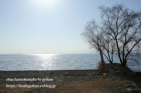 もうすぐ春の琵琶湖散歩&岩崎珈琲さんへ行って来た~(^^♪_c0326245_13155899.jpg