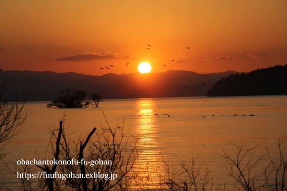 もうすぐ春の琵琶湖散歩&岩崎珈琲さんへ行って来た~(^^♪_c0326245_13182001.jpg