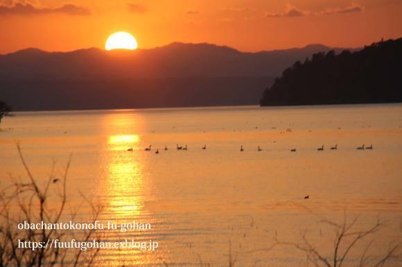 もうすぐ春の琵琶湖散歩&岩崎珈琲さんへ行って来た~(^^♪_c0326245_13183317.jpg