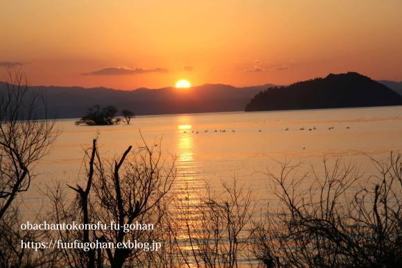 もうすぐ春の琵琶湖散歩&岩崎珈琲さんへ行って来た~(^^♪_c0326245_13184595.jpg
