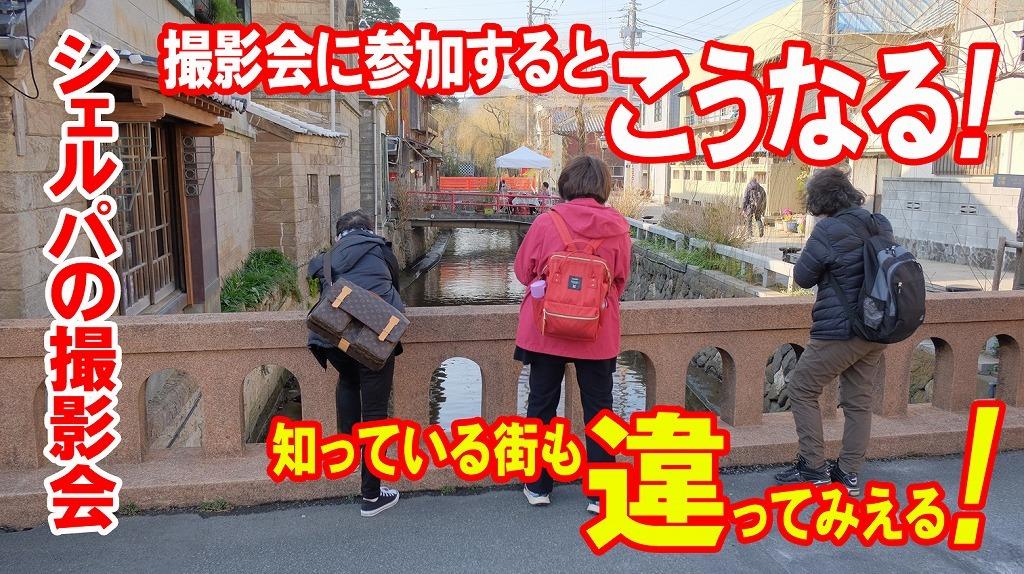 河津桜とペリーロード_f0221724_09403924.jpg