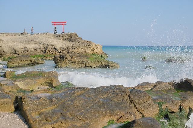 河津桜とペリーロード_f0221724_10073865.jpg