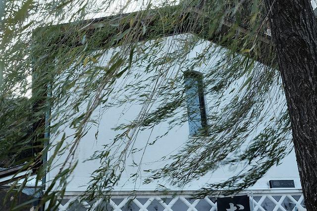 河津桜とペリーロード_f0221724_10131529.jpg