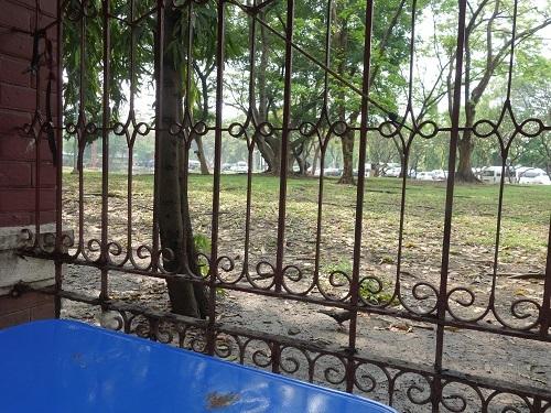 ルンビニ公園北のブッフェ屋台、健在でした_c0030645_16495637.jpg
