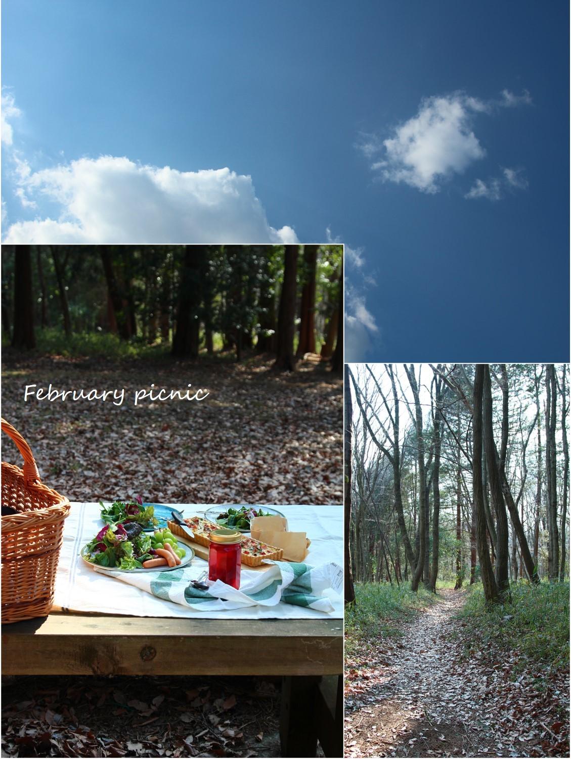 February picnic_a0107981_08491180.jpg