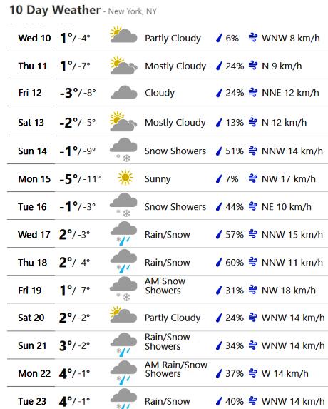 最近、雪また雪のニューヨーク、今週も来週も雪模様_b0007805_22002352.jpg