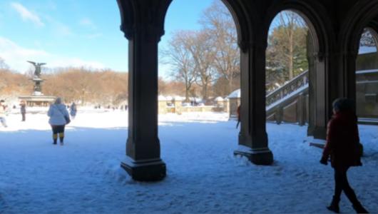 最近、雪また雪のニューヨーク、今週も来週も雪模様_b0007805_22025100.jpg