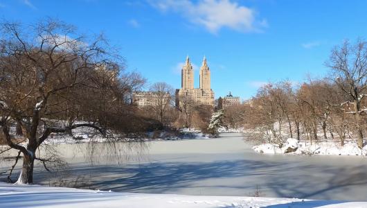 最近、雪また雪のニューヨーク、今週も来週も雪模様_b0007805_22032320.jpg