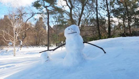 最近、雪また雪のニューヨーク、今週も来週も雪模様_b0007805_22042730.jpg