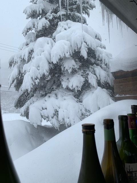 2月9日 ㈫ 雪 -5度_f0210811_13351212.jpg