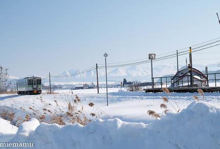雪景色と美瑛からの列車~1月_d0340565_20204040.jpg