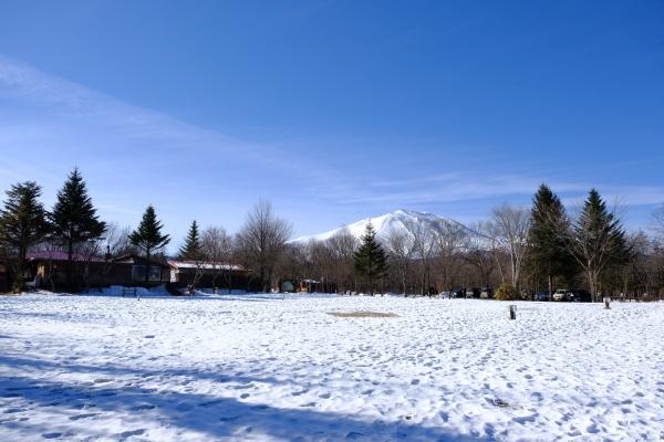 フィールド撮影という名の朝散歩♪_b0174425_11003060.jpg