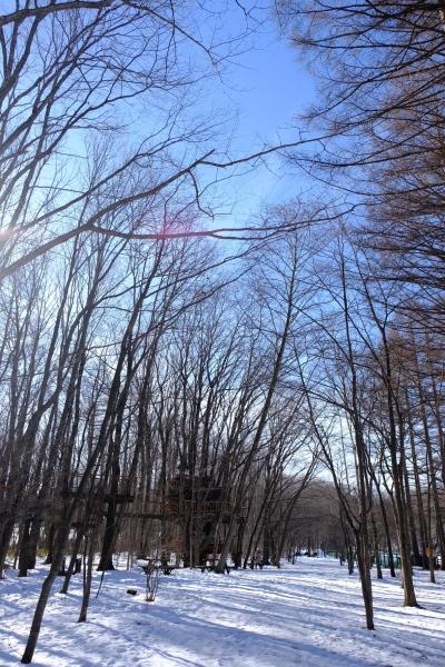 フィールド撮影という名の朝散歩♪_b0174425_21175973.jpg