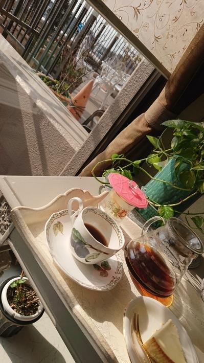 神戸から、窓辺に届く陽の光_a0098174_22162300.jpg